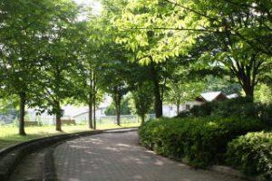 美和公園イメージ